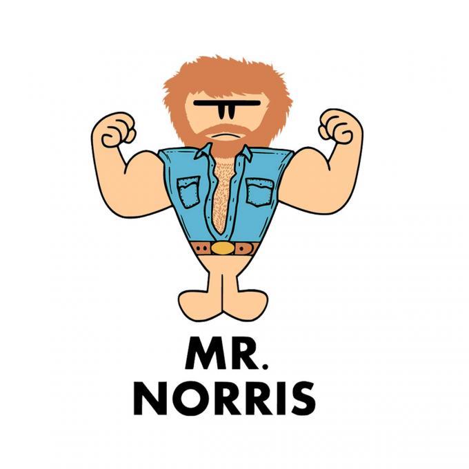 Camiseta Chuck Norris. Mr.Norris