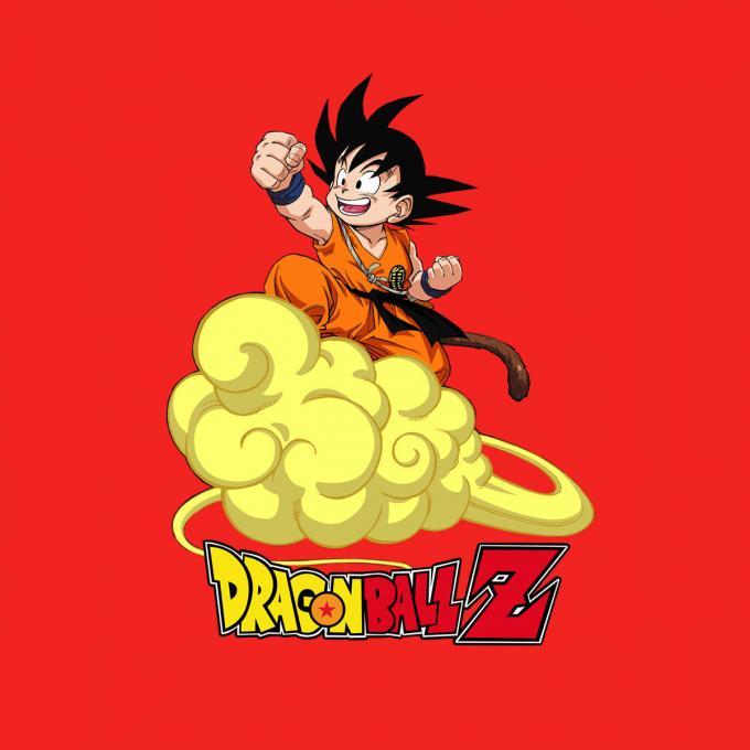 Camiseta Dragon Ball Z. Goku