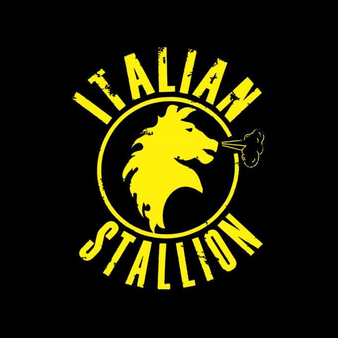 Camiseta Rocky Balboa. Italian Stallion