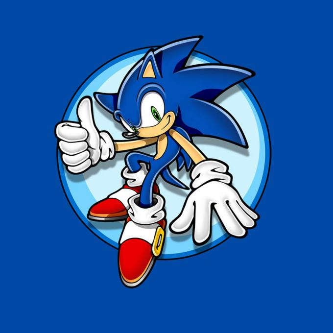 Camiseta Sonic the Hedgehog. Saludo Ok