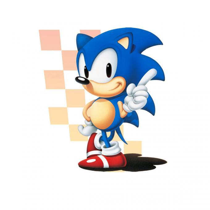 Camiseta Sonic. The Hedgehog