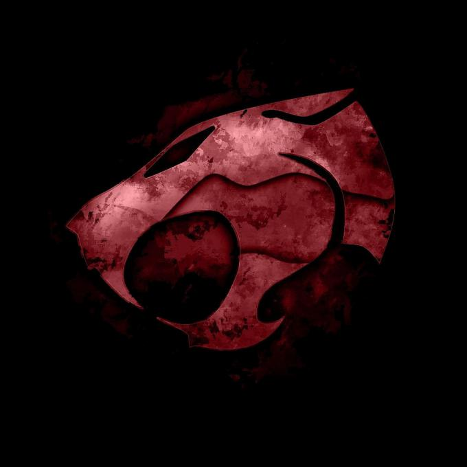 Camiseta chica Thundercats (Los felinos cósmicos). Logo