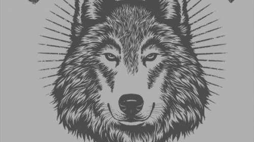 Camiseta chica Winterfell. Dire wolves. Juego de Tronos