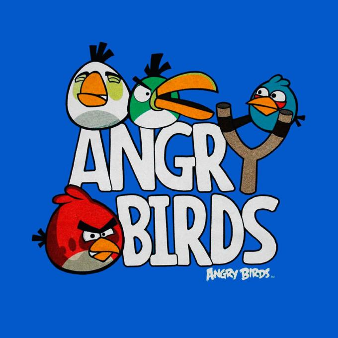Camiseta niño Angry Birds. Personajes Tirachina