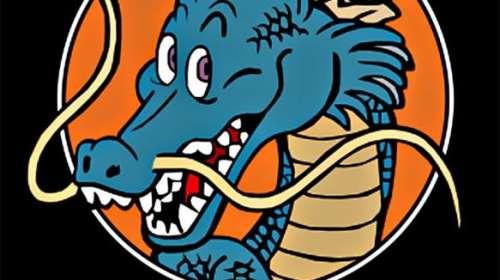 Camiseta niño Dragon Ball Z. Dragón sagrado. Modelo 1