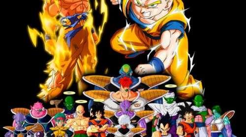Camiseta niño Dragon Ball. Personajes