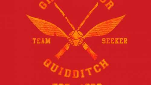 Camiseta niño Harry Potter. Gryffindor Quidditch