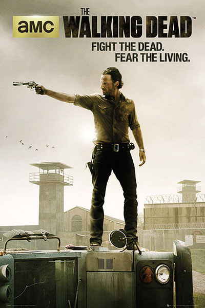 Póster The Walking Dead. Rick Grimes